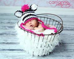 zebra hat!
