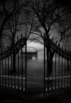 dark-recesses-of-the-soul: ☽ dark, horror, eerie, macabre ☾