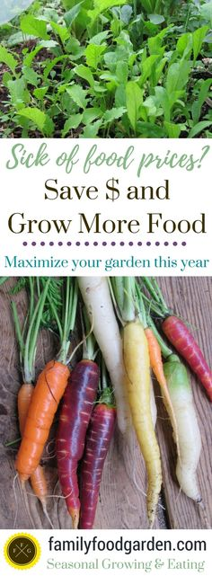 Save Thousands Gardening