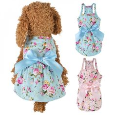 Chihuahua Clothes, Puppy Clothes, Cat Dresses, Nice Dresses, Shirt Outfit, Dress Outfits, Dog Outfits, Summer Dog, Spring Summer