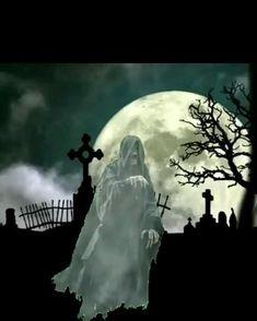 Happy Halloween Gif, Happy Halloween Pictures, Fröhliches Halloween, Halloween Wishes, Halloween Prints, Halloween Images, Arte Horror, Horror Art, Gif Terror