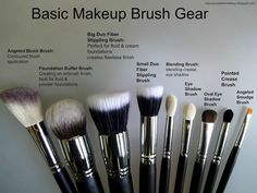 How To Choose An Essential Makeup Brush Set! Makeup Gear You Need To Have! By Jezz Dallas