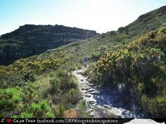 #5 #1000thingstodo #capetown Hike up Skeleton Gorge  A magical hike up the back of Table Mountain.   I <3 Cape Town