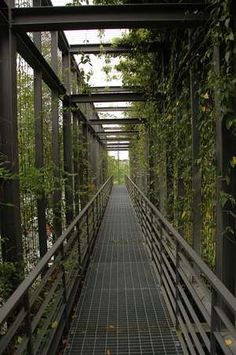 Project: Ara Damansara Seri Pilmoor   SEKSAN DESIGN - Landscape Architecture and Planning