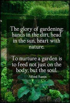 A garden is usually a piece of land that is used for growing flowers, trees, shrubs, and other plants. The act of caring for a garden by watering the flowers and plants and removing the weeds is called gardening. Linkin Park Soldier, Organic Gardening, Gardening Tips, Vegetable Gardening, Kitchen Gardening, Gardening Courses, Flower Gardening, Indoor Gardening, Container Gardening