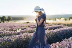 https://flic.kr/p/NdPh9p | Untitled | Lavender fields in Sault, France