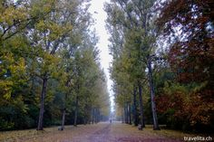 Weimar - Park an der Ilm im Herbstgewand - Reisetipp