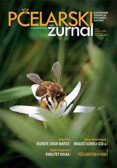 PČELARSKI ŽURNAL br. 1 - oktobar 2008.