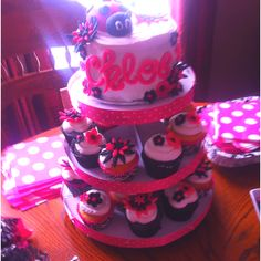 Lady bug smash cake and cupcakes