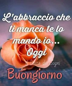 Buongiorno Good Morning Messages, Morning Images, Good Morning Quotes, Italian Memes, Italian Quotes, Coeur Gif, Italian Phrases, Good Morning Coffee, New Years Eve Party