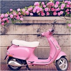 A pink scooter... give me give me give me!