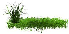 Dessin et peinture - vidéo 2408 : Comment peindre la végétation (feuillage, herbe) 1 ? - huile ou acrylique.