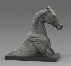 Horse Ecorche, steve lord on ArtStation at https://www.artstation.com/artwork/4kGPl