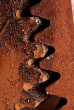Aging Metal Teeth by HelC on Flickr