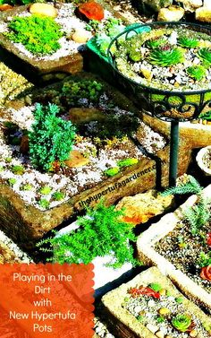 Playing in the Dirt with New Hypertufa Pots - The Hypertufa Gardener