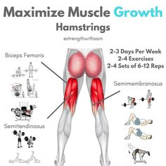 The Hamstrings have to main functions collectively: Flex the knee and help extend the hips. Training each movement is key for optimal Hamstring development. Heres how to target each muscle that makes up the Hamstrings. Hamstring Muscles, Glute And Hamstring Workout, Glute Workouts, Best Hamstring Exercises, Academia Fitness, Fitness Motivation, Gym Workout Tips, Workout Fitness, Leg Press Workout
