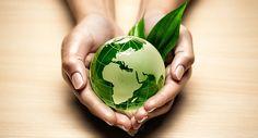 Diferencias entre ecologia y medio ambiente