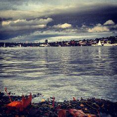 Lake Union in Seattle, WA
