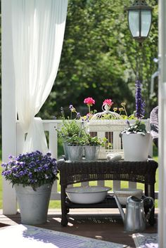 Porch Decorating - via StrandviksVillan: Blått är flott Back Patio, Porch Decorating, Summer Time, Outdoor Gardens, Outdoor Living, Table Decorations, Buckets, Porches, Fun