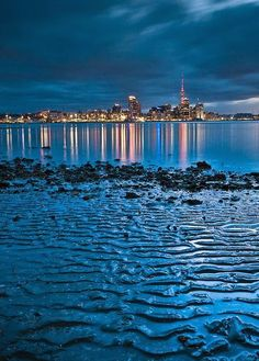 """Auckland, New Zealand...""""Lights in the city look pretty to me, night in the city looks fine."""""""