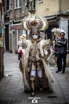 gorgeous Carnivale costume