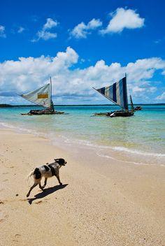 New Caledonia - Pirogues