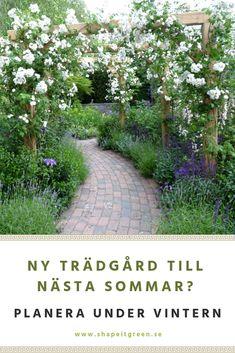 Vintern är den perfekta årstiden att börja planera och drömma om en ny trädgård. Oavsett om du vill göra det på egen hand eller om du vill ha proffshjälp så är det bra att vara ute i god tid för att ha en färdig ritning att följa redan tidigt på våren... Interior Garden, Green Garden, Trellis, Garden Inspiration, Exterior Design, Garden Design, Sidewalk, Herbs, Backyard