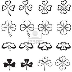 The leaves of clover in three and four leaf Stock Photo - 12044787