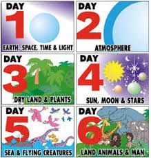 7 days of creation crafts 7 Days Of Creation, Creation Bible, Creation Crafts, Genesis Creation, Creation Ministries, Genesis 6, Gods Creation, Bible Story Crafts, Bible Crafts For Kids