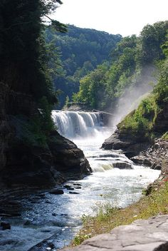 The Lower Falls   Letchworth State Park Near Geneseo, NY
