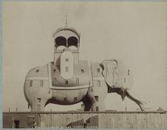 Elephant Hotel in Coney Island, 1885. James V. Lafferty