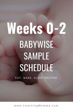 Babywise Schedule Sample For A Newborn - When Should They Sleep? - Babywise Schedule Sample For A Newborn - When Should They Sleep? Brandi Long brandinlong Everly Jade Daily Newborn Schedule For Sleep And Feeding - 0 to 2 Weeks Old Bebe Love, Baby Schedule, Newborn Schedule Sleep, Feeding Schedule For Baby, Routine For Newborn, Baby Routines, Baby Kicking, After Baby, Baby Arrival