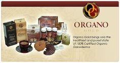 The Benefits of Ganoderma Coffee (Organo Gold Coffee)