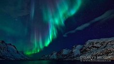 Space colours... on aurora hunting in Northern Norway by Dionys Moser on 500px.