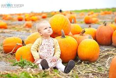 1 year old - pumpkin patch. Love the bright colors! photo by Aaron Varga Photography