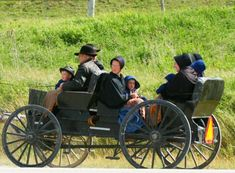 amish and mennonite - The Amish live in Pennsylvania and follow the old world ways even today. They travel by  cart, not in cars. They are Pacifists.