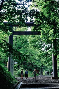 Entrance to Hokkaido Shrine   Sapporo, Japan
