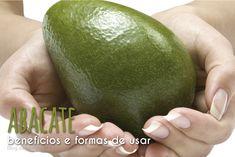 Abacate: benefícios e formas de usar