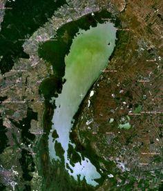 250px-Neusiedler_Lake_satellite.png (250×294)
