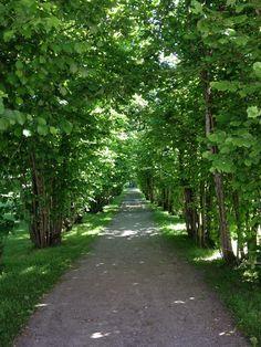 Haflund Herregård, Sarpsborg, Norway. Fredrikstad, Travel Memories, Brewery, Norway, Sidewalk, Country Roads, Urban, City, Places