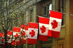 Montreal no Canadá é uma das melhores cidades do mundo para estudar