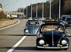 2 slammed VW'S