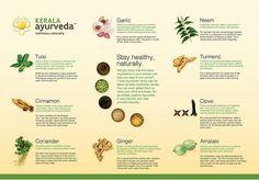 keywords:  Ayurveda, Ayurvedic, Ayurveda academy, Ayurvedic academy, ayurvedic medicines for life