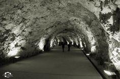 Cavas de Zonda. (a pesar de su nombre, Las Cavas se encuentran en Rivadavia ) Aquiles Cuadra visitó el túnel de Zonda y se dió cuenta que ahí podría elaborar un champagne, como se fabrican en Francia o España. Cavas de Zonda posee la única cava en Sudamérica, que tiene por techo natural la montaña. La temperatura todo el año está entre los 16º y 18º. En el año 2000 se elaboró el primer champaña nature de la firma, luego se elaboró un rosado especial.