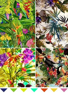 Tropical Trend | Live Colorful