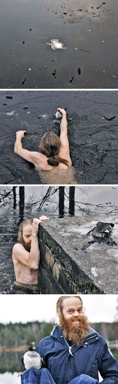 Norwegian Man Saves A Duck Trapped Under The Ice. . . Hero!