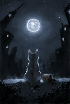 Tonight and Friday, let's do MOON ART. Warrior Cats, I Love Cats, Crazy Cats, Cute Cats, Fantasy Kunst, Fantasy Art, Moon Art, Moon Moon, Cats And Kittens