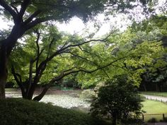 Koishikawa Kōrakuen Garden (小石川後楽園) in 東京, 東京都