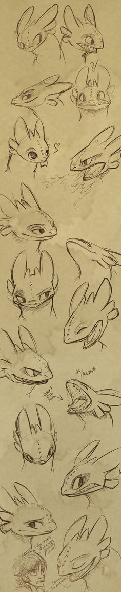 Toothless Expressions by *sharpie91 on deviantART