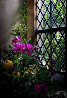 (via Pin by Jan on Around the COTTAGE…   Pinterest)